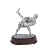 Pewter Trophies (0)