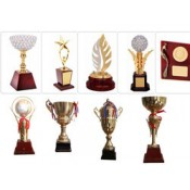 Custom Made Trophies (0)