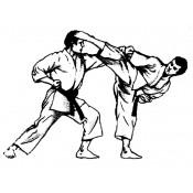 Karate (0)