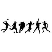 Team Sport (93)